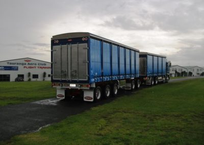 Domett Curtain Tippers