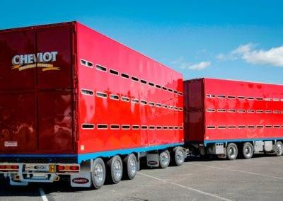 Domett Livestock Truck & Trailer